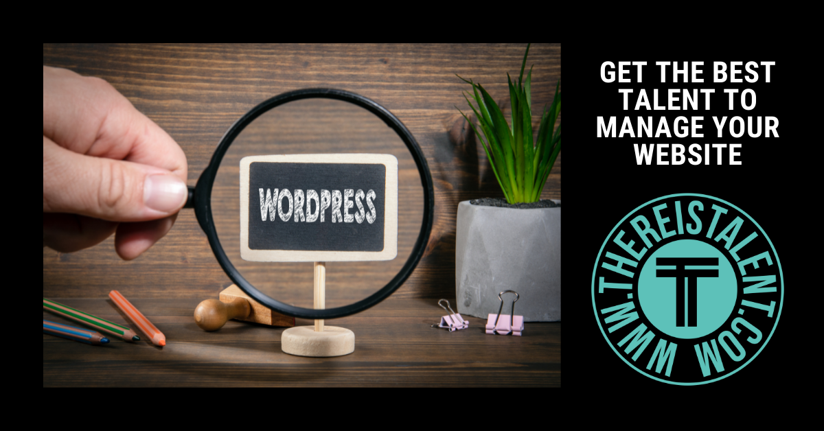 Virtual Assistant For WordPress